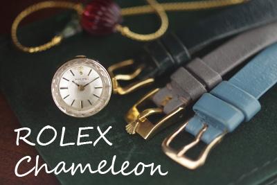 ROLEXカメレオン 14金ケース ROLEXオリジナル革ベルト3本 *2951rolex